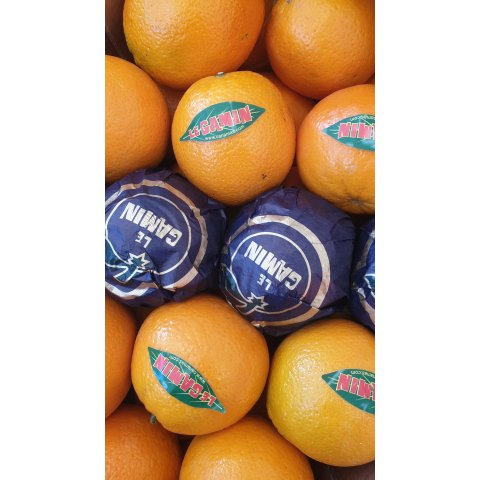 Orange à dessert