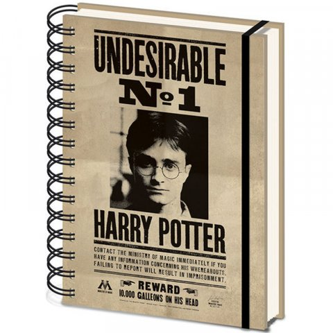 Carnet Bloc Notes A5 Harry Potter Sirius et Harry 3D