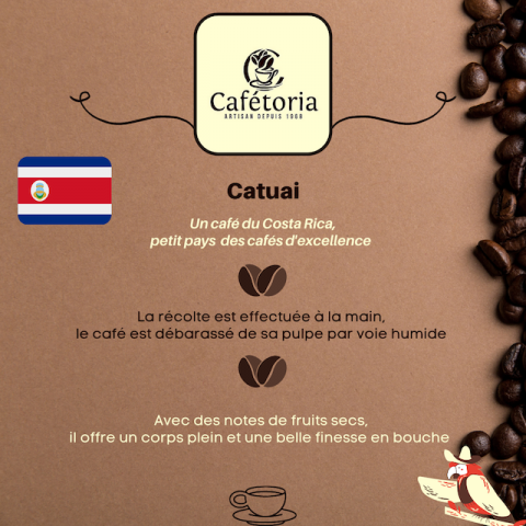 CAFE CATUAÏ - COSTA RICA