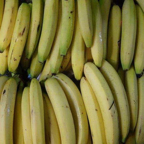 Bananes BIO de République Dominicaine