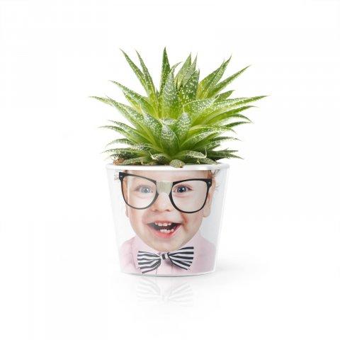 Le pot Belle Plante pour aromates ou fleurs