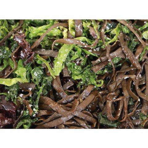 Panaché d'Algues