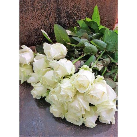 Rose Avalanche blanche  LUCAS FLEURS