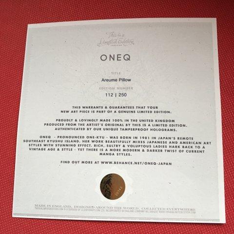 Coussin 45X45 Oneq série limitée