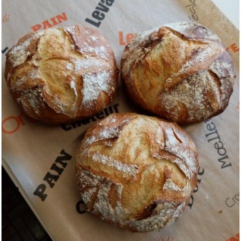 Petit pain rond fariné