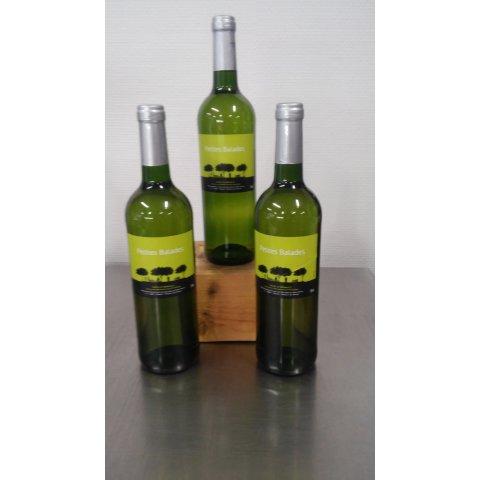 Vin Blanc petites balades