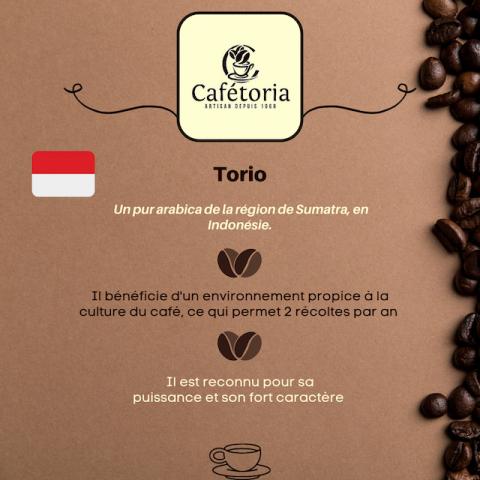 CAFE TORIO - INDONÉSIE